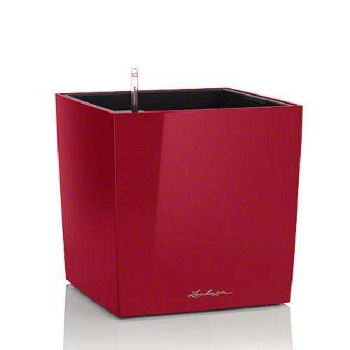 Lechuza Cube PREMIUM 50 All-in-One-Set, scarlet rot hochglanz